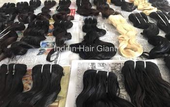 Hair-distributors7